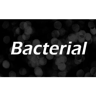 細菌.jpg
